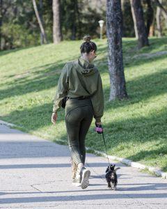 Volunteer Walking a Small Dog