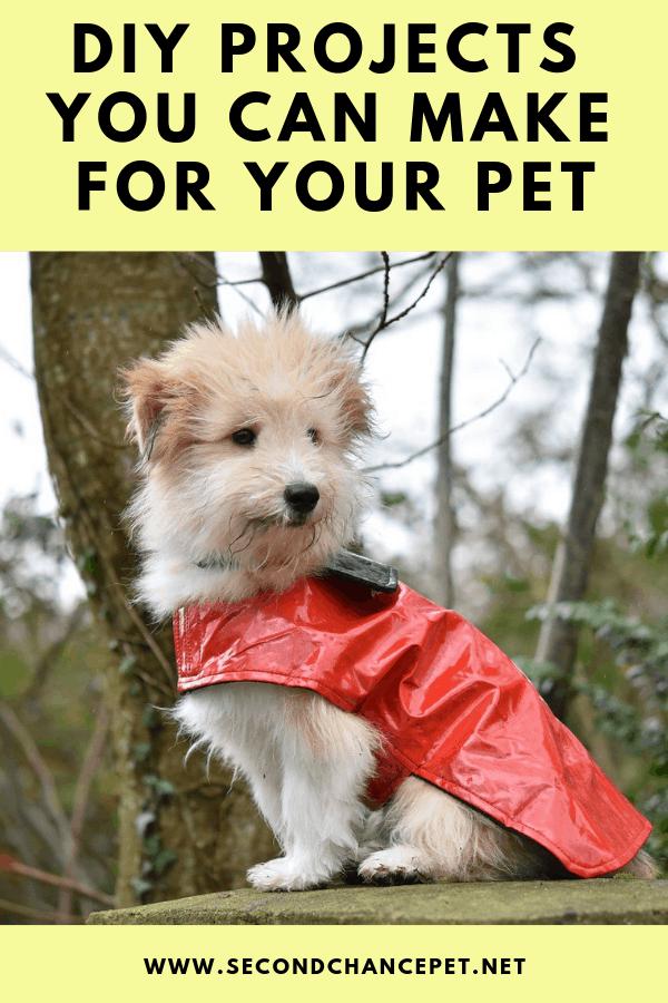 Small dog wearing DIY red raincoat