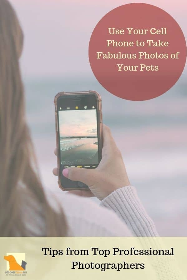 Taking pet photos with your cell phone
