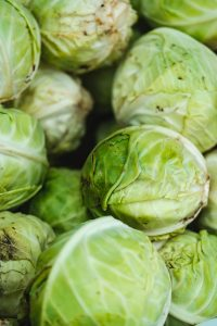 can a dog eat brussels sprouts?