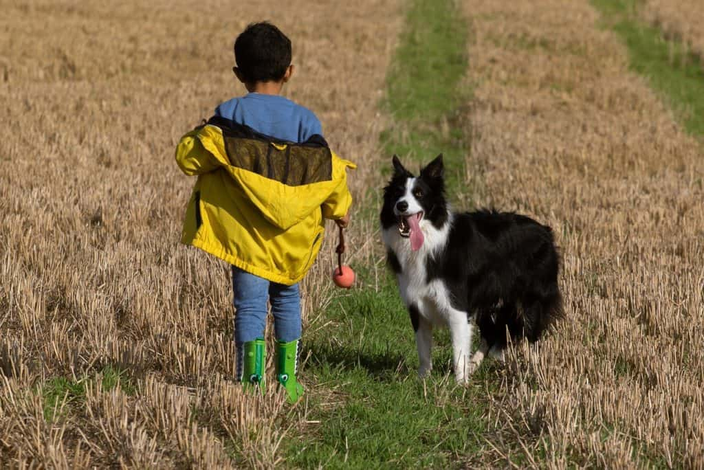 Kids and dogs are great together but make sure the parents are on board